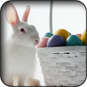 White Rabbits Wallpapers icon