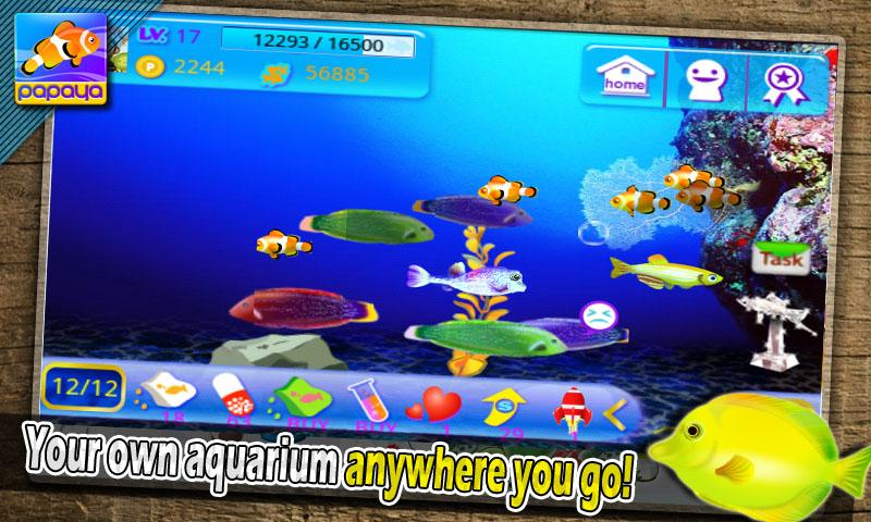 Papaya Fish - screenshot