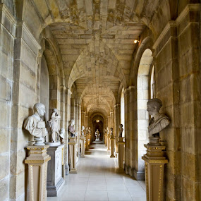 Here is a photograph taken from the antiques passage inside Castle Howard.  Located in York, Yorkshire, England, UK. by Michael D Beckwith - Buildings & Architecture Other Interior