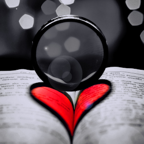 heart by Pravin Dabhade - Artistic Objects Other Objects ( canon, ring, hear, red, artistic object, pink )