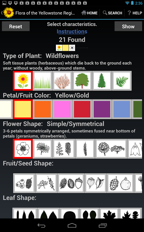 Flora of Yellowstone Intro - screenshot