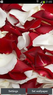 玫瑰花瓣3D动态壁纸