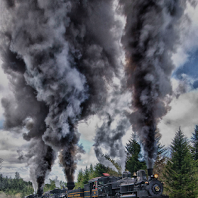 Team Work by Donna Neal - Transportation Trains ( steam engins, shay engins, cass )