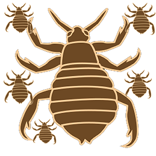 Lice Hunter 動作 App LOGO-APP試玩