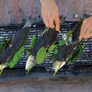Grilled Sea Bass Wrapped in Fig Leaves (Lavraki Stin Schara).