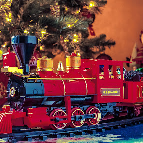 For the Kids by Boyd Smith - Public Holidays Christmas ( toy train, christmas, snowman, christmas tree )