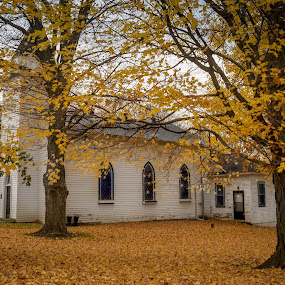 Cradled by Maples by Donna Brittain - Buildings & Architecture Places of Worship ( maples, nature, church, canada, autumn, fall, trees, ontario, salem, heritage united church, country,  )