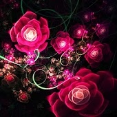 3D rose 19