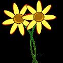 Namedays-pro icon