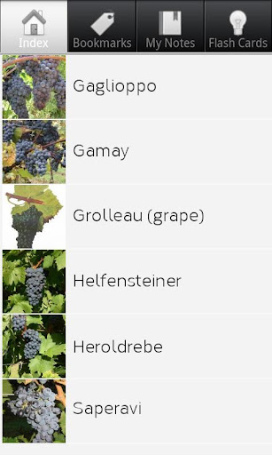 Grape Varieties