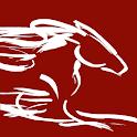 OSB mBank icon