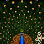 Theme eXPERIAnce Peacock