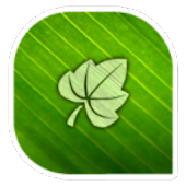 Green Leaf CLauncher Theme