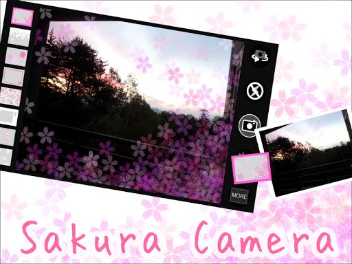 Sakura Camera 桜 Camera