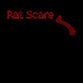 Rat Scare