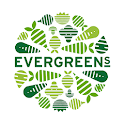 Evergreens Salad icon