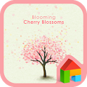 blooming cherry blossoms dodol icon