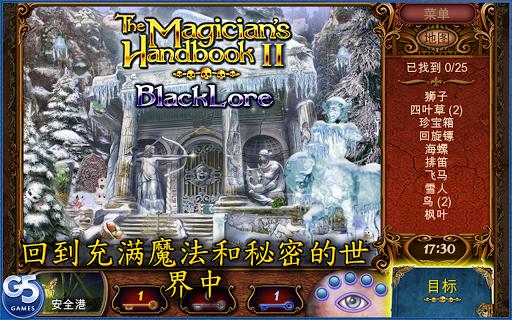 Magician's Handbook 2