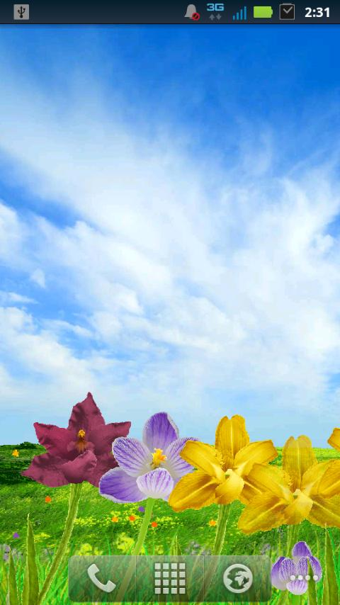 Blooming Flowers LWP - screenshot