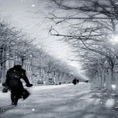 Snowy Street Live Wallpaper
