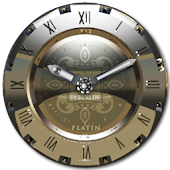 Platinium Clock Widget