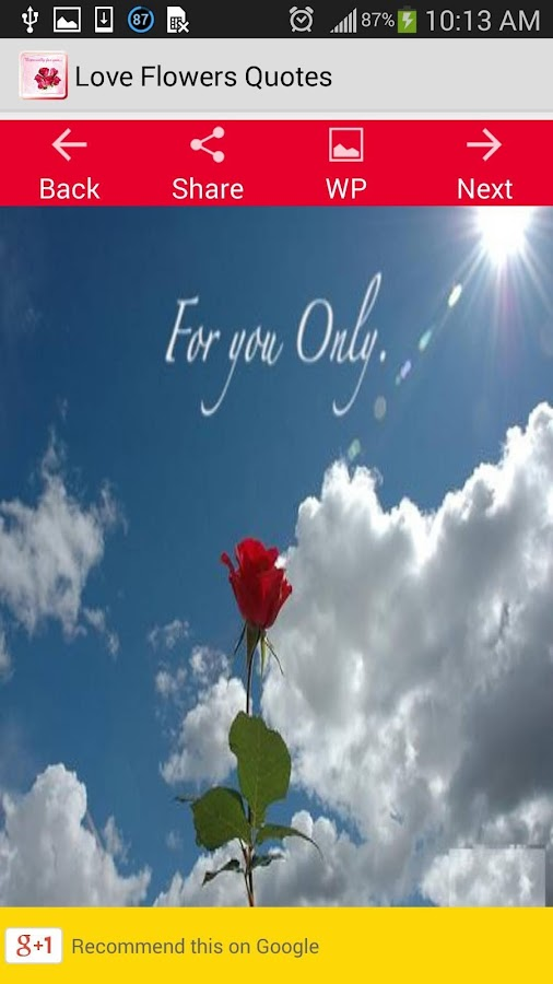 Love Flower Quotes New Love Flowers Quotes  Android Apps On Google Play