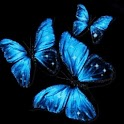 Three Blue Butterflies Flying logo