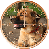 Dog 2 Sunshine Analog Clock