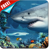 Shark Reef Live Wallpaper Free