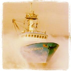 by Luis Domar - Transportation Boats ( beringseafisherman, americanbeauty )