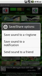 Bird Songs- screenshot thumbnail