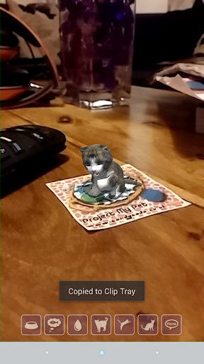 投影宠物猫