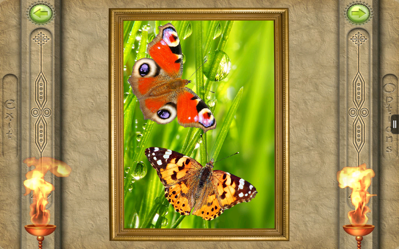 FlipPix Jigsaw - Small World- screenshot