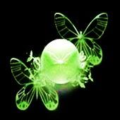 3D butterfly 11
