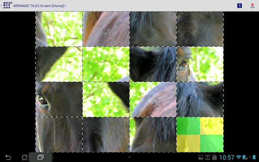 EarnThePicture picture puzzle