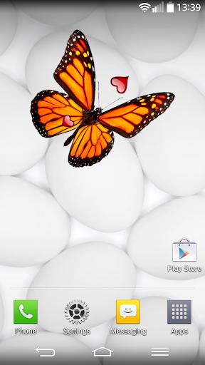 美麗 的蝴蝶 小工具