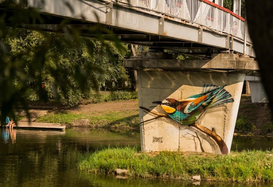 city park by Borovskoy Alexey - City,  Street & Park  Amusement Parks ( street, bridge, river )