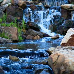 by Ian  Rivera - Nature Up Close Water