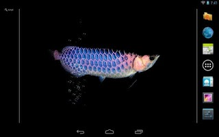 Screenshot of Aquarium Arowana LWP