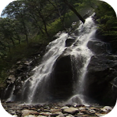 Water Fall Live Wallpaper