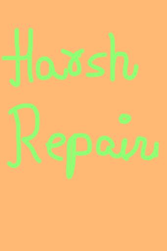 Harsh Repairs