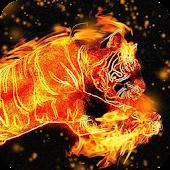 Brilliant Tiger Live WP