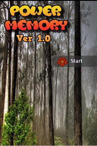 Power Memory Ver 1.0