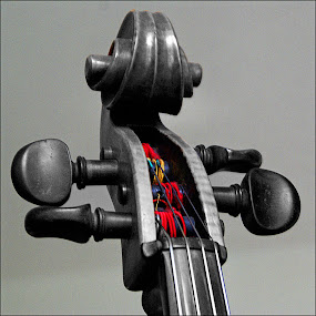 Colorfully High Strung by Joseph T Dick - Artistic Objects Musical Instruments ( wood instruments, musical instruments )