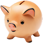 PocketMoney Lite icon