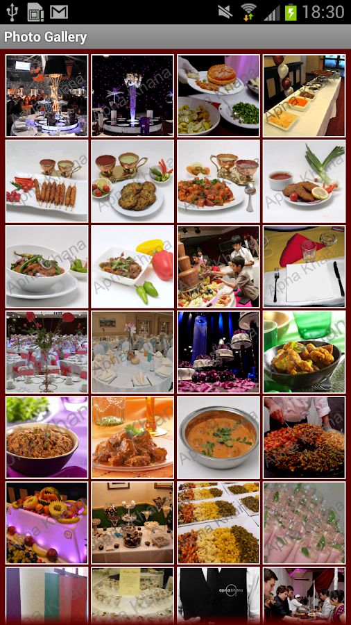 Apna Khana Catering- screenshot