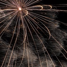 Star Burst by Robert Marquis - Public Holidays July 4th ( star, fireworks, burst, july, 4th,  )
