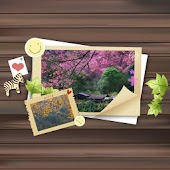 Free Picture Theme