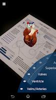 Screenshot of Anatomy 4D