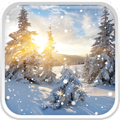 Winter Sunrise Live Wallpaper
